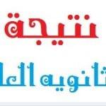 بوابه الثانويه العامه تحدد موعد نتيجة الثانوية العامة 2014 - اخبار وطني