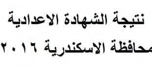 نتيجة الشهادة الاعدادية محافظة الاسكندرية