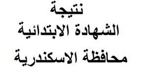 نتيجة الشهادة الابتدائية محافظة الاسكندرية