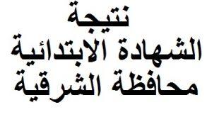 نتيجة الشهادة الابتدائية محافظة الشرقية