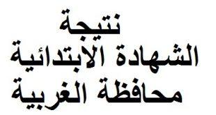 نتيجة الشهادة الابتدائية محافظة الغربية