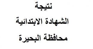 نتيجة الشهادة الابتدائية محافظة البحيرة