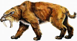 أشهر الحيوانات التى إنقرضت منذ ألاف السنين من على سطح الأرض